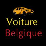 Used cars in Belgium icon