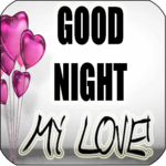 Good Night My Love icon