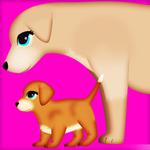 dog pregnancy surgery 2 icon