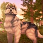 Wolf Tales - Online Wild Animal Sim icon