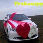 Wedding Car Decoration icon