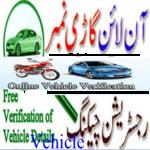 Vehicle Verification{Pk} icon