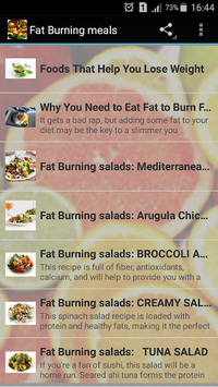 fat burning meals pc screenshot 1