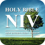 Audio Bible NIV Free icon