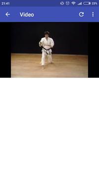 26 Shotokan Karate Katas pc screenshot 1