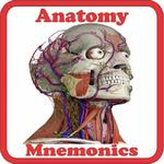 Anatomy Mnemonics icon