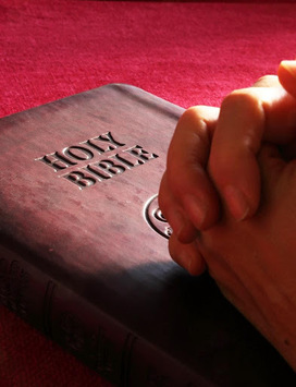 The Holy Bible English - Free Offline Bible App pc screenshot 1