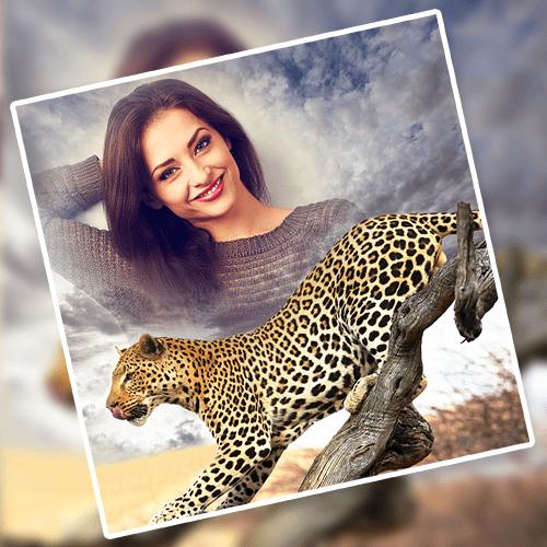 Wild Animal Photo Frames PC screenshot 1
