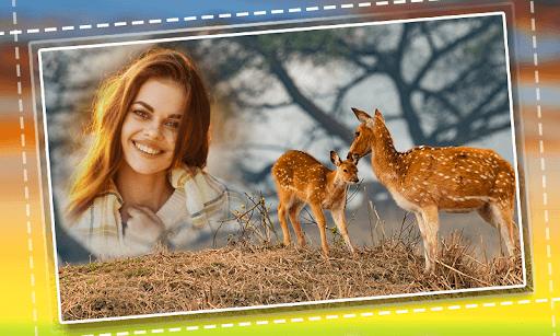 Wild Animal Photo Frames PC screenshot 2