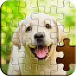 Jigsaw Puzzle for pc logo