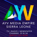 AYV Media Empire for pc logo