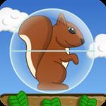 Squirrel Ball icon