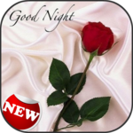 Romantic Good Night Messages icon