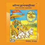 Bhagavad Gita Hindi icon