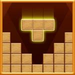 Block Puzzle Wood 2019 NEW icon