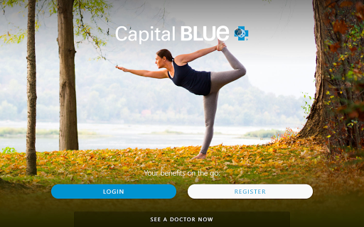 Capital Blue pc screenshot 1