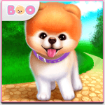 Boo - The World's Cutest Dog icon