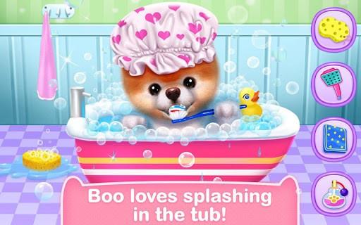 Boo - The World's Cutest Dog pc screenshot 1