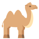 TryCamel icon