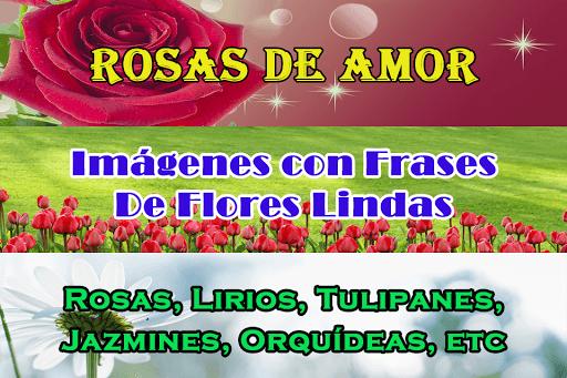 Flores Con Frases PC screenshot 2