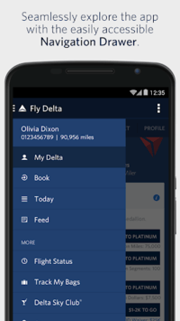Fly Delta pc screenshot 1