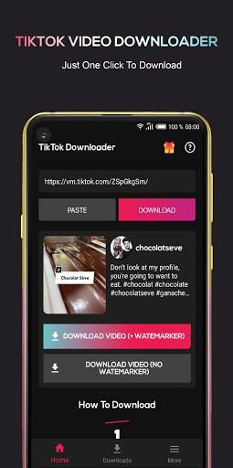 Video Downloader for Tic Toc Download TikTok Video pc screenshot 1