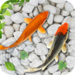 Fish Live Wallpaper 2018: Aquarium Koi Backgrounds for pc logo