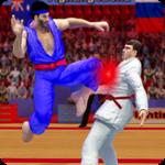 Tag Team Karate Fighting Tiger: World Kung Fu King icon