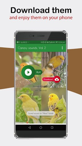 Canary Sounds, Chants and tones free PC screenshot 3