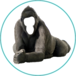 Make me Gorilla icon