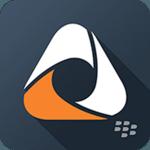 BlackBerry Access icon