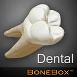 BoneBox™ - Dental Lite icon