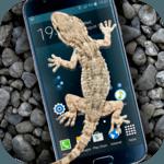Gecko in Phone scary joke icon