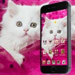 Pink Persian white Cat theme icon