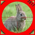 Rabbit Hunting 2 for pc logo