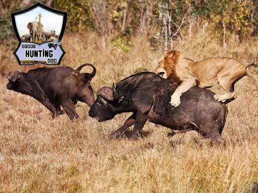 Animal Hunting: Safari 4x4 armed action shooter PC screenshot 1