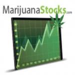 MarijuanaStocks icon