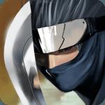 Ninja Revenge icon