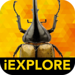 iBugs AR icon