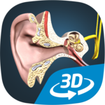 The mechanism of hearing educational VR 3D for pc logo