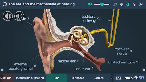 The mechanism of hearing educational VR 3D pc screenshot 2