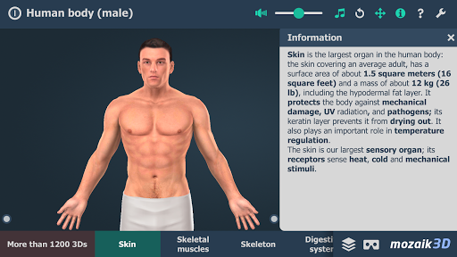 Human body (male) educational VR 3D pc screenshot 1