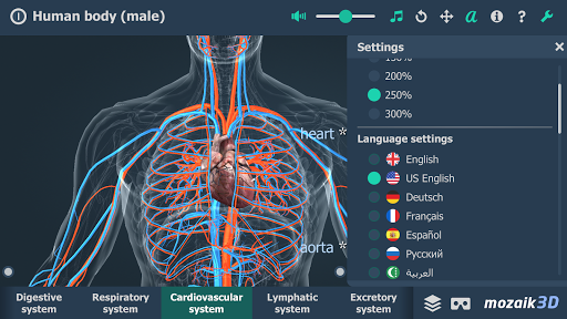 Human body (male) educational VR 3D pc screenshot 2