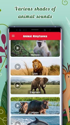 Animal Ringtones Free Download pc screenshot 1