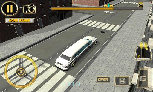 Limo Parking Simulator 3D PC screenshot 3