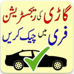 Online Vehicle Verification icon