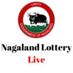 Nagaland Lottery Result for pc logo