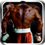 Virtual Boxing 3D Game Fight icon