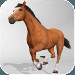 Horse Simulator 3D icon