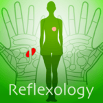 Hand Chart  / for Reflexology icon